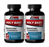 Antioxidant booster - HOLY BASIL EXTRACT 750Mg For Natural Stress Relief - Holy basil extract capsules - 2 Bottles 120 Capsules