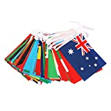Coxeer Country Flag Banner International World Flag String National Flag Banner for Party Decoration