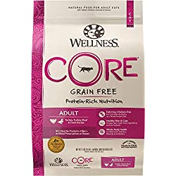 Wellness Core Natural Grain Free Dry Cat Food, Turkey, Turkey Meal & Duck Recipe, 11-Pound Bag