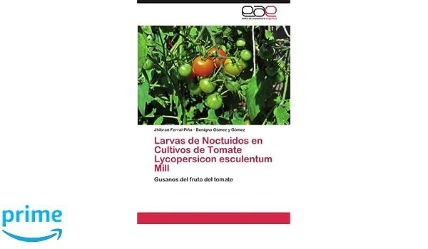 Amazon.com: Larvas de Noctuidos en Cultivos de Tomate Lycopersicon esculentum Mill: Gusanos del fruto del tomate (Spanish Edition) (9783659034923): Jhibran ...