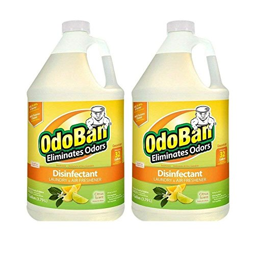 OdoBan Citrus Odor Eliminator and Disinfectant Multipurpose