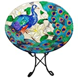 Continental Art Center CAC2609500 Deep Hand Painted Glass Plate, 18 by 3-Inch, Peacock