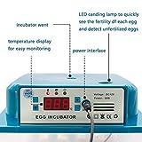 Safego Egg Incubator for Hatching Eggs, Digital