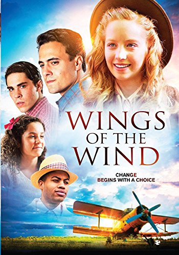 Wings of the Wind - Robinson Stores Mall