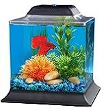 API Betta Kit Cube Fish Tank, 1.5 gallon