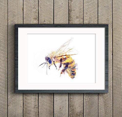 Original Signed Watercolor (Fine Art Print of My Original Honey Bee Watercolor Painting Signed A3 A4 Wildlife Animal)