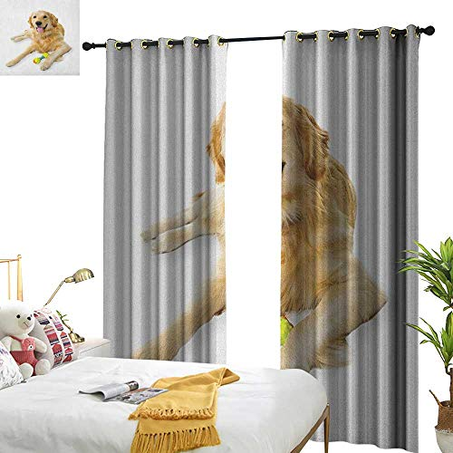 longbuyer Golden Retriever Blackout Draperies for Bedroom Pet Dog Laying Down with Toy Friendly Domestic Puppy Playful Companion W72 x L108,Suitable for Bedroom Living Room Study, etc.