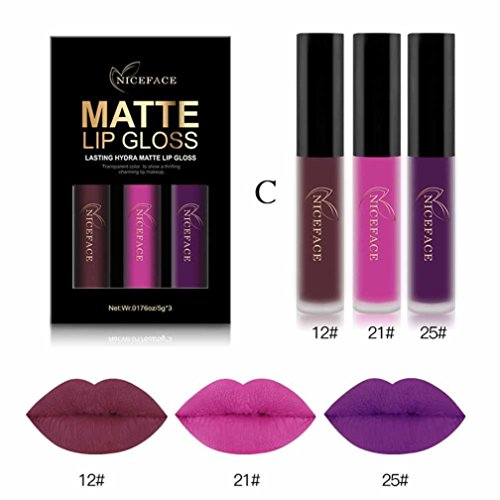 HP95 Set Of 3 Matte Liquid Lip Gloss Long Wearing Lipstick Waterproof Sexy Lipstick - Pcgs Dollar