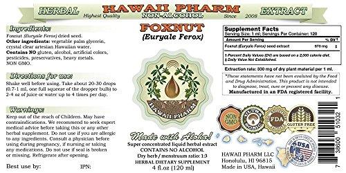 Foxnut (Euryale Ferox) Glycerite, Organic Seeds Alcohol-Free Liquid Extract, Qian Shi, Glycerite Herbal Supplement 2x4 oz by HawaiiPharm (Image #2)