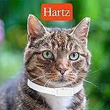 Hartz UltraGuard Plus Water Resistant 7 Month