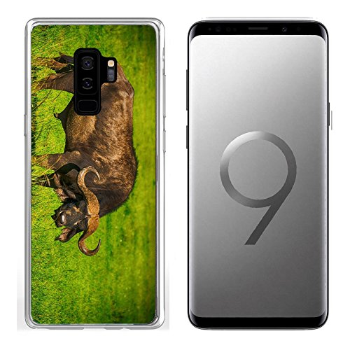 Samsung Galaxy S9 Plus Clear case Soft TPU Rubber Silicone Bumper Snap Cases Male cape buffalos standing in short grass Image 34700099 Customized Tablemats Stain Re ()