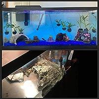 Amazon Com Petforu Reptile Hides Fish Tank Cave Pet Habitat Decor Hideouts Turtle House Large Pet Supplies