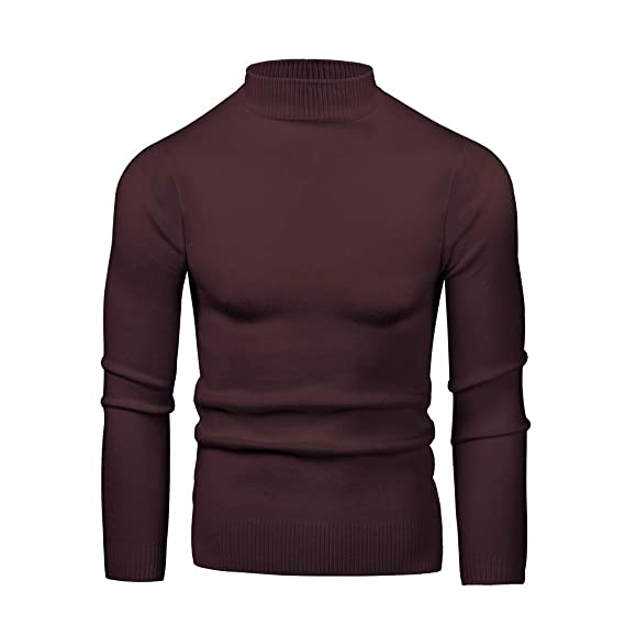 RI Men/'s Casual Turtleneck Fitted Long Sleeve Jumper