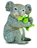 koala in can - CollectA Wildlife Koala Bear Eating Eucalyptus Toy Figure - Authentic Hand Painted Model