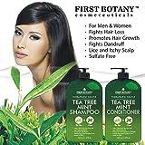 Tea Tree Mint Shampoo and Conditioner - This set