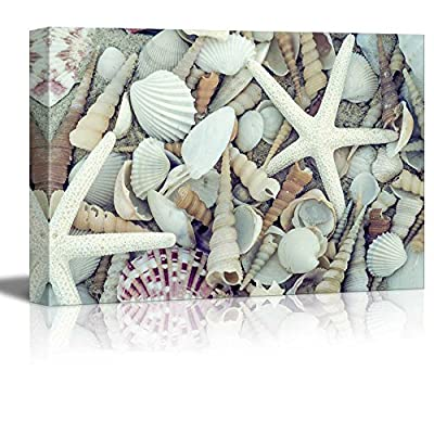 Canvas Prints Wall Art - Still Life Bunch of Seashells and Starfish | Modern Wall Decor/Home Decoration Stretched Gallery Canvas Wrap Giclee Print & Ready to Hang - 12