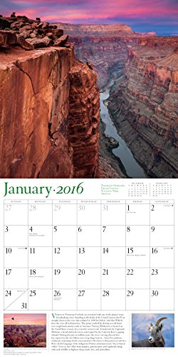 Audubon Nature Wall Calendar 2016