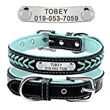 Didog Leather Custom Collar,Braided Leather Engraved Dog Collars with Personalized Nameplate for Small Medium Large Dogs,Blue,L Size