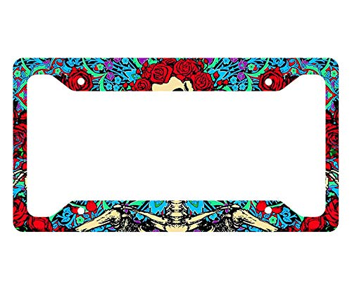Dwi24isty Auto License Plate Frame Grateful Dead License Plate Frame