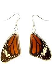 Genuine Butterfly Striped Tiger Wing Earrings Set