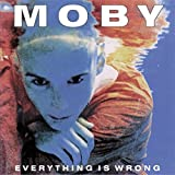 Everything Is Wrong (Vinyl)