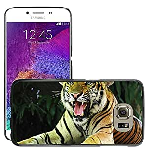 Super Stella Slim PC Hard Case Cover Skin Armor Shell Protection // M00149762 Tiger Cat Thailand // Samsung Galaxy S6 (Not Fits S6 EDGE)