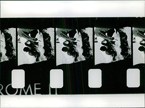 Vintage photo of Film strip of a movie in a makingThe filmstrip was a common form of still image instructional -