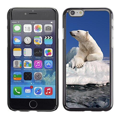 "Hülle Case Schutzhülle Cover Premium Case // V00002188 Eisbär // Apple iPhone 6 6S 6G 4.7"""