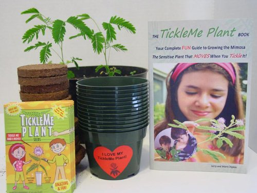 TickleMe Plant Classroom Kit