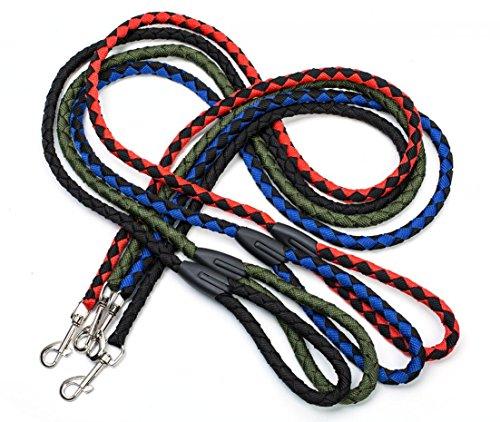 colorful dog leash - 2