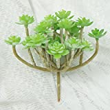Lily Garden All Kinds of Green Artificial Succulent Plants (H)