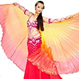 Pilot-trade Women's Egyptian Egypt New Belly Dance Costume Colorful Isis Wings (One Size, 3#yellow-orange-red)