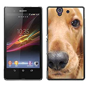 PC/Aluminum Funda Carcasa protectora para Sony Xperia Z L36H C6602 C6603 C6606 C6616 Golden Retriever Dog Animal Pet / JUSTGO PHONE PROTECTOR