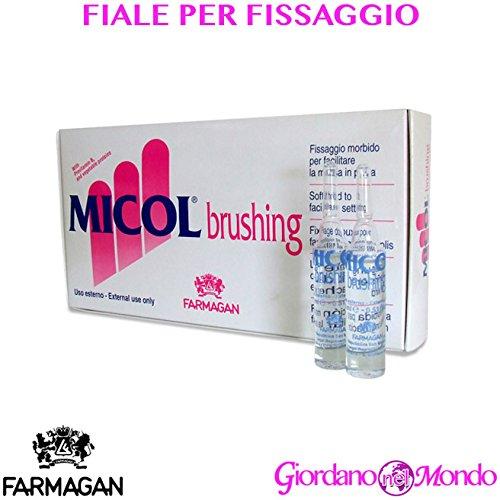 FIALE FISSATIVE PER CAPELLI 20x15 ml MICOL BRUSHING FARMAGAN PROFESSIONALE BARBIERE PARRUCCHIERE
