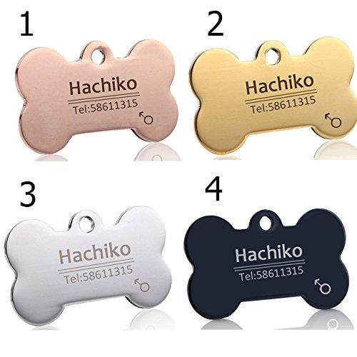 Engraving Multiple Languages Pet Cat Dog Collar Accessories