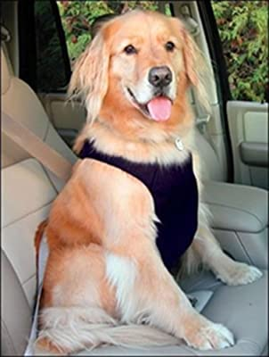 Canine Friendly Vest Harness, Black