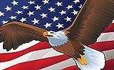 Citizen Pride USA Bald Eagle Door Mat by Joe Barsin, 30x18