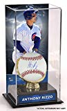Anthony Rizzo Chicago Cubs Autographed Baseball and Gold Glove Display Case with Image - Fanatics Authentic Certified