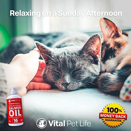 Vital Pet Life Средство от насекомых