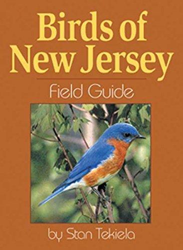 Field Red Jersey - Birds of New Jersey Field Guide