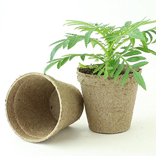 Jiffy 3'' Round Peat Pots - OMRI LIsted Organic - 1400ct Case by Jiffy