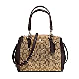 Mini Christie Carryall with Pleats in Signature (Coach F36719) Gold/khaki/brown