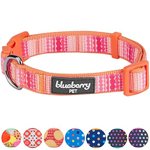 terns Modern Trend Multicolor Beads Dog Collar, Small, Neck 12