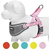 Blueberry Pet New 5 Colors Soft & Comfy 3M Reflective Strips Padded Dog Harness Vest, Chest Girth 30'' - 38.5'', Pink, Large, Nylon Adjustable Training Harnesses for Dogs