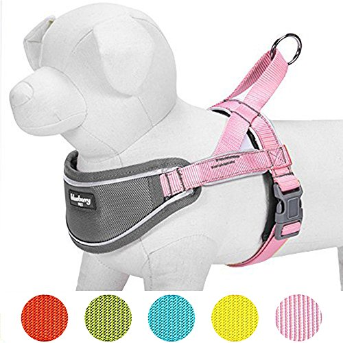 Blueberry Pet New 5 Colors Soft & Comfy 3M Reflective Strips Padded Dog Harness Vest, Chest Girth 30'' - 38.5'', Pink, Large, Nylon Adjustable Training Harnesses for Dogs by Blueberry Pet