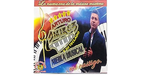Chilena Para Oaxaca Y Guerrero by Arturo Ramirez Y Su Teclado Niebla Musical on Amazon Music - Amazon.com