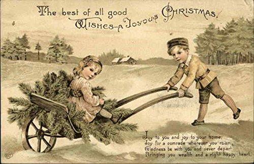 Evergreen Wheelbarrow - Children Outdoors with Wheelbarrow and Evergreen Springs Original Vintage Postcard