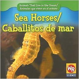 Amazoncom Sea Horsescaballitos De Mar Animals That Live In The