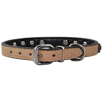 Daeou Collar de Perro Cabeza del PU cráneo Cuello Grande Perro Anillo Suministros para Mascotas: Amazon.es: Productos para mascotas