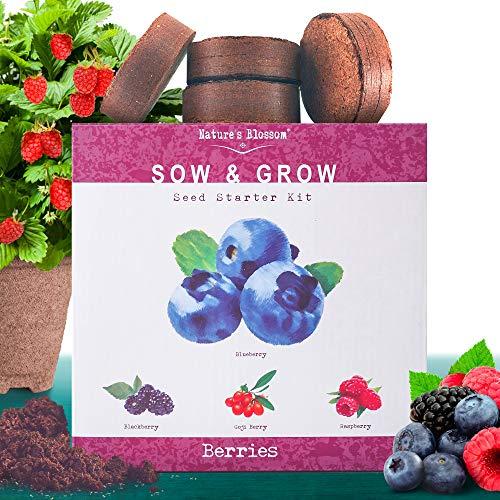 Nature's Blossom Fruit Growing Kit. Grow 4 Types of Berries from Seed: Raspberries, Blueberries, Goji Berry, Blackberries Organic Seeds, Pots, Seed Starting Soil, Markers, Gardening Guide